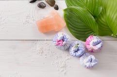 Tratamiento del balneario, fondo del aromatherapy Detalles y accesorios Fotografía de archivo