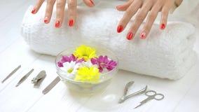 Tratamiento del balneario para las manos femeninas almacen de video