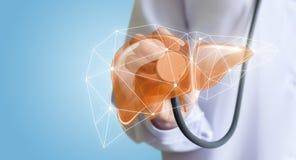 Tratamiento y diagnósticos del hígado Foto de archivo libre de regalías