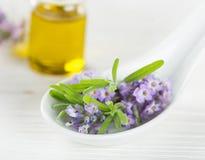 Tratamientos de la salud con las flores de la lavanda Foto de archivo libre de regalías