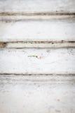 Trate color de rosa con suavidad en los sairs de mármol Imagen de archivo libre de regalías