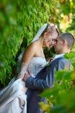 Trate el abrazo con suavidad de un par nuevo-casado Fotografía de archivo libre de regalías