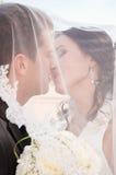 Trate el beso con suavidad Imagen de archivo libre de regalías