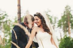 Trate el beso con suavidad en el hombro Fotos de archivo
