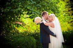 Trate el beso con suavidad la novia y el novio Imagenes de archivo