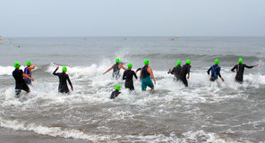 Trathlon Swim. Group of triathletes entering surf for ocean swim segment Royalty Free Stock Photography
