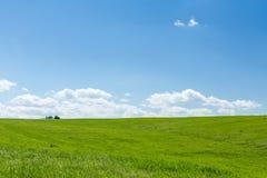Trator agrícola que trabalha em um campo de trigo verde Fotografia de Stock