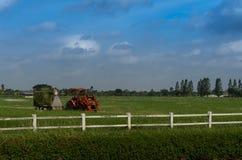 Trator com o cortador de grama da máquina de sega na exploração agrícola Foto de Stock