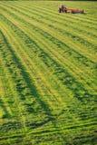 Trator de exploração agrícola velho em um campo. Fotografia de Stock