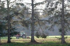 Trator entre as árvores imagem de stock royalty free