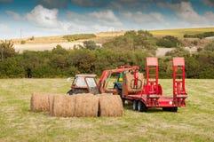 Trator na colheita da palha Foto de Stock Royalty Free