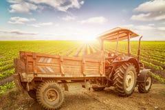 trator no campo para recolher colheitas Foto de Stock