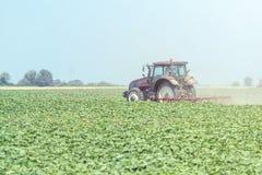 Trator no campo verde M?quina da agricultura fotografia de stock royalty free