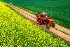Trator nos campos agrícolas do trigo e da colza e em nuvens dramáticas fotografia de stock royalty free
