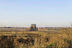 Trator que cultiva o campo de restolho do trigo com resíduo da colheita Foto de Stock Royalty Free