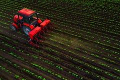 Trator que cultiva o campo na mola, vista a?rea foto de stock royalty free