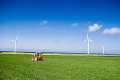Trator que pulveriza o campo verde Fotos de Stock Royalty Free