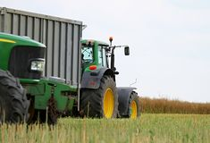Trator que trabalha em um campo durante a colheita Imagens de Stock