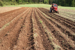 Trator que trabalha um campo ploughed fallow Fotografia de Stock
