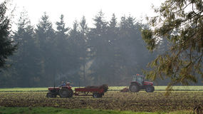 Tratores e árvores no campo Fotografia de Stock Royalty Free