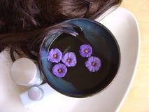 Trattamento 4 dei capelli fotografia stock libera da diritti