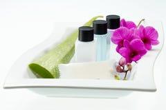 Trattamento della stazione termale con aloe vera e l'orchidea sul vassoio bianco Immagine Stock