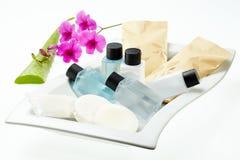 Trattamento della stazione termale con aloe vera e l'orchidea sul vassoio bianco Fotografie Stock Libere da Diritti