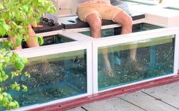 Trattamento della stazione termale del pesce, tempo di rilassamento Fotografia Stock