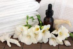 Trattamento della stazione termale di aromaterapia Fotografia Stock Libera da Diritti
