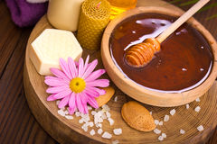 Trattamento della stazione termale e del miele Immagini Stock