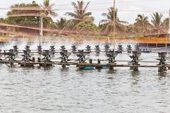 Trattamento delle acque delle aziende agricole del gambero Fotografie Stock