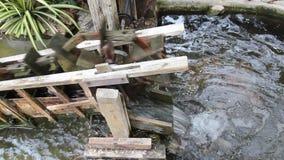 Trattamento delle acque reflue di legno di concetto del generatore eolico stock footage