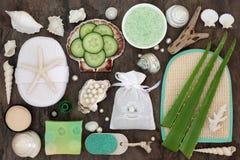 Trattamento di bellezza di Skincare Fotografia Stock