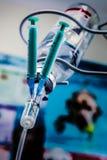 Trattamento di concetto in clinica veterinaria Nel gocciolamento endovenoso sono attaccati due siringhe con le medicine Aghi atta Fotografie Stock Libere da Diritti