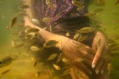 Trattamento di cura di pelle di pedicure dei piedi della stazione termale dei pesci Fotografia Stock