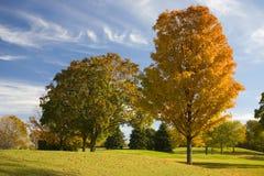 Tratto navigabile di terreno da golf di autunno Fotografia Stock Libera da Diritti
