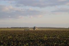 Trattore che ara aratro il campo Lavorando il suolo nella caduta dopo il raccolto la conclusione della stagione Fotografie Stock