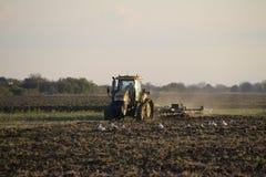 Trattore che ara aratro il campo Lavorando il suolo nella caduta dopo il raccolto la conclusione della stagione Immagine Stock