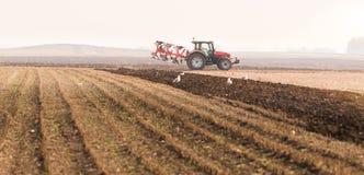 Trattore che ara i campi - preparare terra per la semina in autunno Immagine Stock