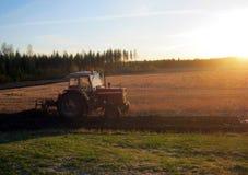 Trattore che ara un campo al tramonto Fotografia Stock