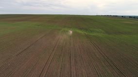 Trattore che coltiva campo alla molla, vista aerea di tramonto stock footage