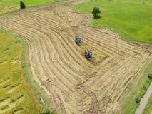 Trattore che guida sopra il giacimento del riso sul raccolto Fotografia Stock