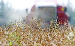 Trattore che prepara terra per seminare Il trattore con il coltivatore tratta il campo prima della piantatura Preparando terra pe Immagine Stock Libera da Diritti