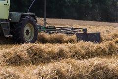 trattore che rivolta il fieno paglia sul campo di grano di estate Fotografie Stock