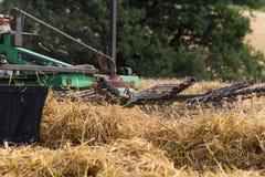 trattore che rivolta il fieno paglia sul campo di grano di estate Immagine Stock