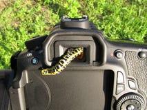 Trattore a cingoli e macchina fotografica di Machaon immagine stock