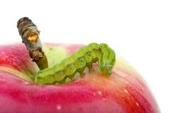 Trattore a cingoli verde sulla mela rossa Fotografie Stock