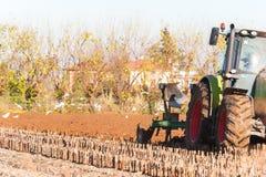 Trattore con l'aratro Aratura del campo di cereale Fotografie Stock