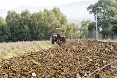 Trattore di agricoltura che ara la Sardegna Fotografie Stock Libere da Diritti
