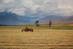 Trattore di agricoltura sul campo Fotografie Stock Libere da Diritti